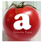 アムリタファームの塩トマト
